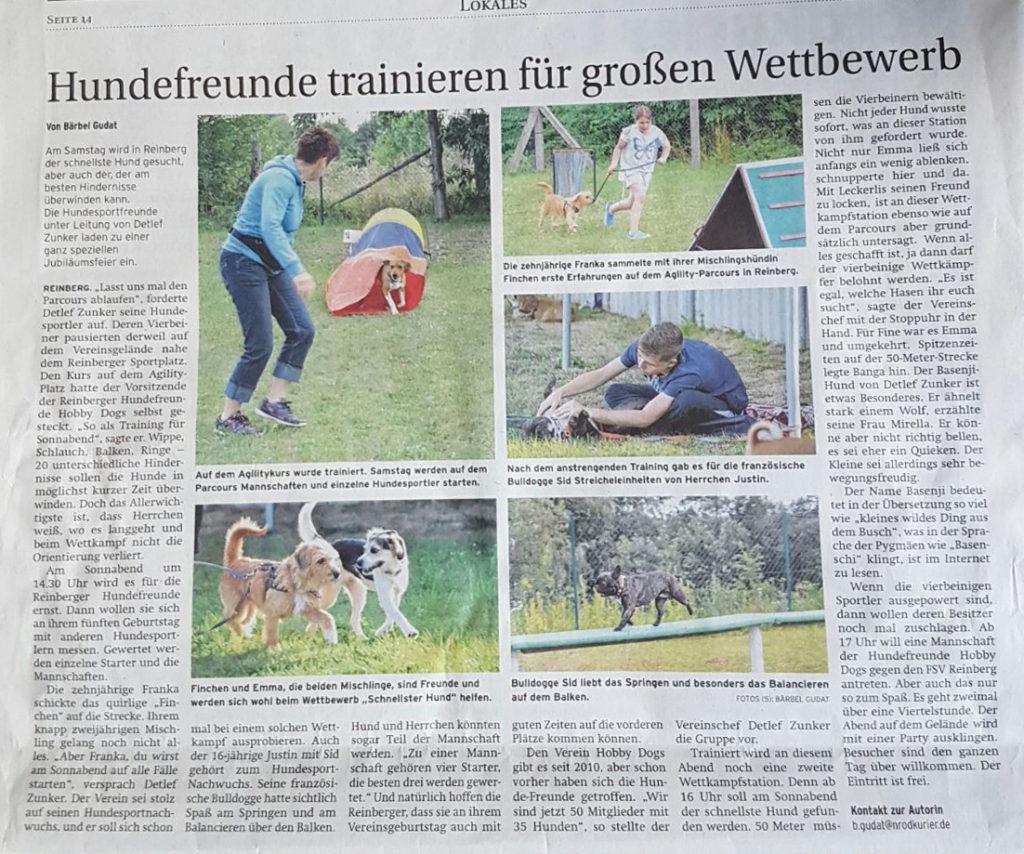 Hundefreunde trainieren für großen Wettbewerb