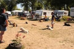 Auftritt im Campingpark Himmelpfort (20. u. 21.07.2013)