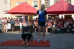 Auftritt zu 750. Jahre Stavenhagen (06.09.2014)