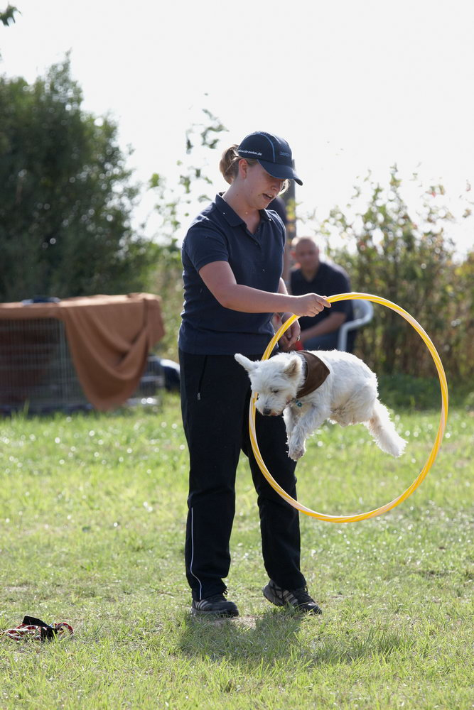Hobby Dogs Sponsorenfest 2012
