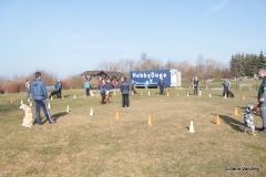 Training (09.03.2014)