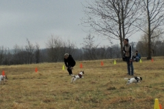 Training (25.03.2012)