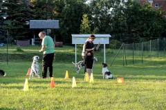 Training am 05.06.2013