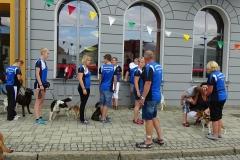 Altstadtfest Stavenhagen (30.08.2015)